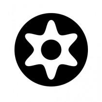 Pin Torx