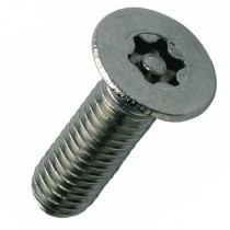 Pin Torx Countersunk Socket Screw Stainless Steel A2 304