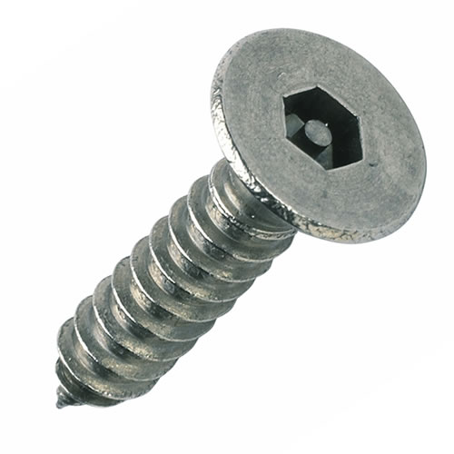 No6 x 1 inch Pin Hex Countersunk Security